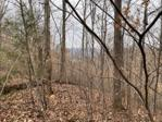 Lot 50 Griffin Trail, Albany, KY 42602 - Image 1: Main View