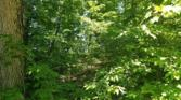 2 Riverwatch Trace Lot 2, SPARTA, TN 38583 - Image 1: Main View