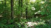 0 Riverwatch Trace Lot 39, SPARTA, TN 38583 - Image 1: Main View