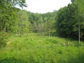 20 AC Willow Grove Hwy., ALLONS, TN 38541 - Image 1: Main View