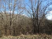 Lot 15 Park Drive, Silver Point, TN 38582 - Image 1: Main View