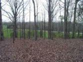 Lot 7 Willow Grove Hwy, ALLONS, TN 38541 - Image 1: Main View