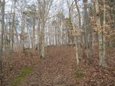 10041 Heard Ridge Road, ALLONS, TN 38541 - Image 1: Main View