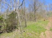 Lot 59 Nadia Lane, SMITHVILLE, TN 37166 - Image 1: Main View