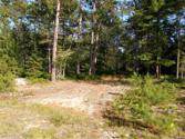 Unit 38, TBD Little Rice Lake Rd, Lake Linden, MI 49945 - Image 1