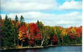 Lot 31 Secluded Point Rd, Michigamme, MI 49861 - Image 1