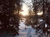 Lot 38 North Fence Lake Dr, Michigamme, MI 49861 - Image 1