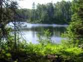 Lot 45A N Fence Lake Dr, Michigamme, MI 49861 - Image 1