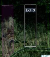 Lot 3 County Road 224 Property Photo