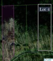 Lot 4 County Road 224 Property Photo