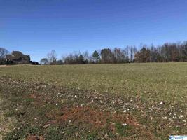 Lot 16 Hatchie Lane Property Photo