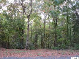 0 DEMA REST SPUR, NORTHPORT, AL 35475 Property Photo