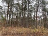 Lot 21 Teddy Drive, Mccalla, AL 35111 - Image 1
