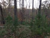 13598 MARTIN ROAD Spurs, Northport, AL 35473 - Image 1