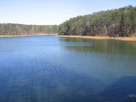 LOT #2 EAGLE POINTE, Double Springs, AL 35553 Property Photo