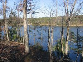 LOT #20 EAGLE POINTE, Double Springs, AL 35553 Property Photo