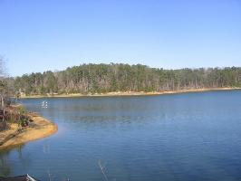 LOT #8 EAGLE POINTE, Double Springs, AL 35553 Property Photo
