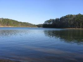 LOT #11 EAGLE POINTE, Double Springs, AL 35553 Property Photo