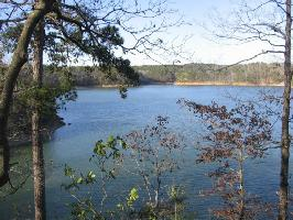 LOT #17 EAGLE POINTE, Double Springs, AL 35553 Property Photo