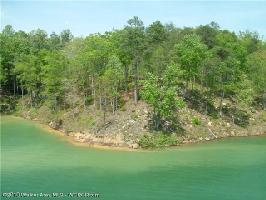 LOT # 4 CO RD 3914, Arley, AL 35541 Property Photo