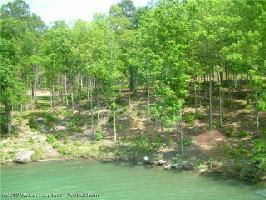LOT # 40 OSPREV AVE, Arley, AL 35541 Property Photo