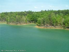LOT # 50 OSPREV AVE, Arley, AL 35541 Property Photo