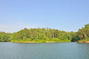 LOT 43 OSPREY AVENUE, Arley, AL 35541 Property Photos