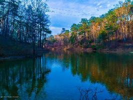 LOT #29 SIPSEY OVERLOOK, Double Springs, AL 35553 Property Photos