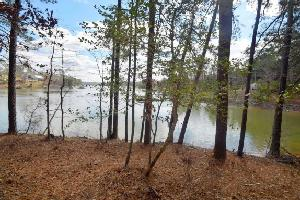 LOT 8 JIMMY MITCHELL SUBDIVISION, Houston, AL 35572 Property Photos