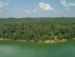 LOT 6 WATERBOUND AT SMITH LAKE Property Photo