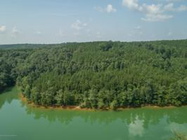 LOT 16 WATERBOUND AT SMITH LAKE Property Photos