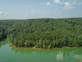 LOT 23 WATERBOUND AT SMITH LAKE Property Photos