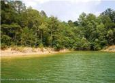 LOT #1 PERPETUITY POINT, Bremen, AL 35033 - Image 1: From Water