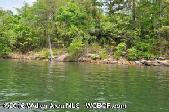 COUNTY ROAD 71, Bremen, AL 35033 - Image 1: Beautiful Lot with Deep year round water