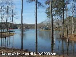LOT 5 SUMMER PLACE LANE, Arley, AL 35541 Property Photo
