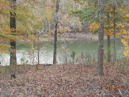 A CR 113, Double Springs, AL 35553 Property Photo
