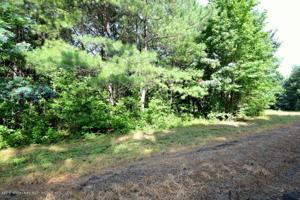 LOT 4 COUNTY ROAD 204 Property Photo