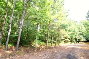 LOT 9 COUNTY ROAD 204 Property Photo
