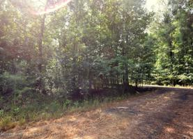 LOT 11 COUNTY ROAD 204 Property Photo