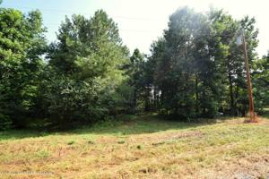 LOT 12 COUNTY ROAD 204 Property Photo
