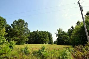LOT 13 COUNTY ROAD 204 Property Photo
