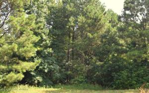 LOT 16 COUNTY ROAD 204 Property Photo