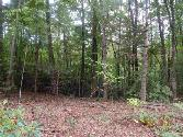 975 Chattooga Lake Rd, Mountain Rest, SC 29664 - Image 1