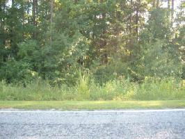 lot 54 Overlook, Fairplay, SC 29643 Property Photo