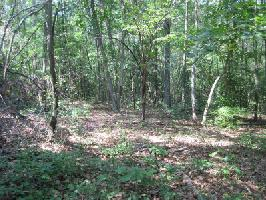 Lot 678 Rhododendron Court, Westminster, SC 29693 Property Photo