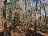 TRACT A TBD The Bear Boulevard, Tamassee, SC 29686 - Image 1