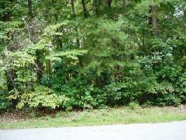 Lot 3 Watersedge Drive, Fair play, SC 29643 Property Photo