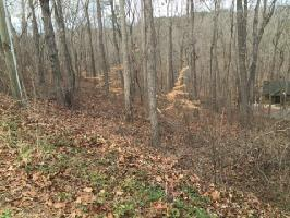 Lot 12 Tokeena Path, Seneca, SC 29678 Property Photo