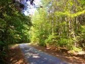 00 The Bear Blvd., Tamassee, SC 29686 - Image 1