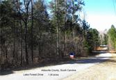 Lot 58 Lake Forest Drive, Abbeville, SC 29620 - Image 1